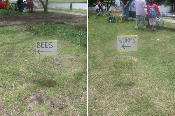 Worms_and_bees